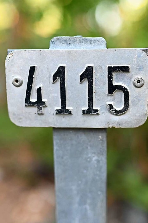 Die Parzellen sind nummeriert.    Foto: Jonas hirt