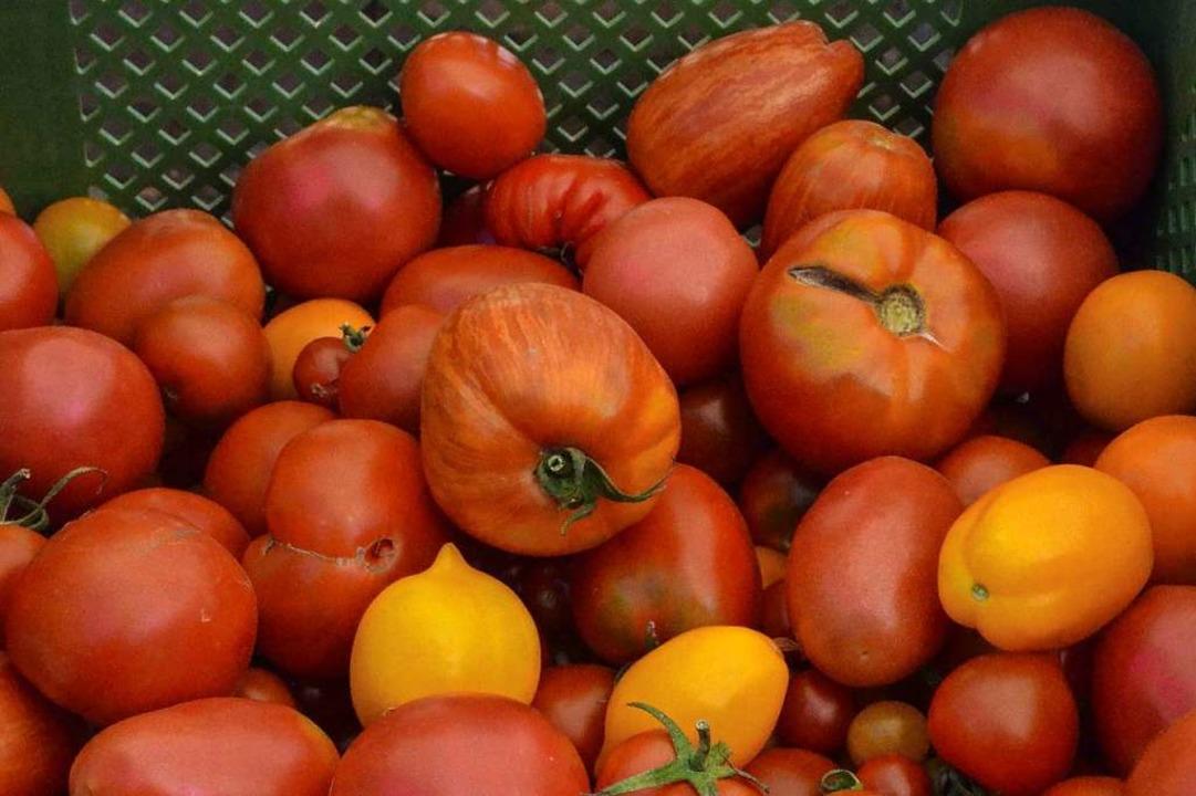Tomatenvielfalt: Auf dem Kleinsthof ge... Produkte, die unverfälscht schmecken.    Foto: Gabriele Hennicke