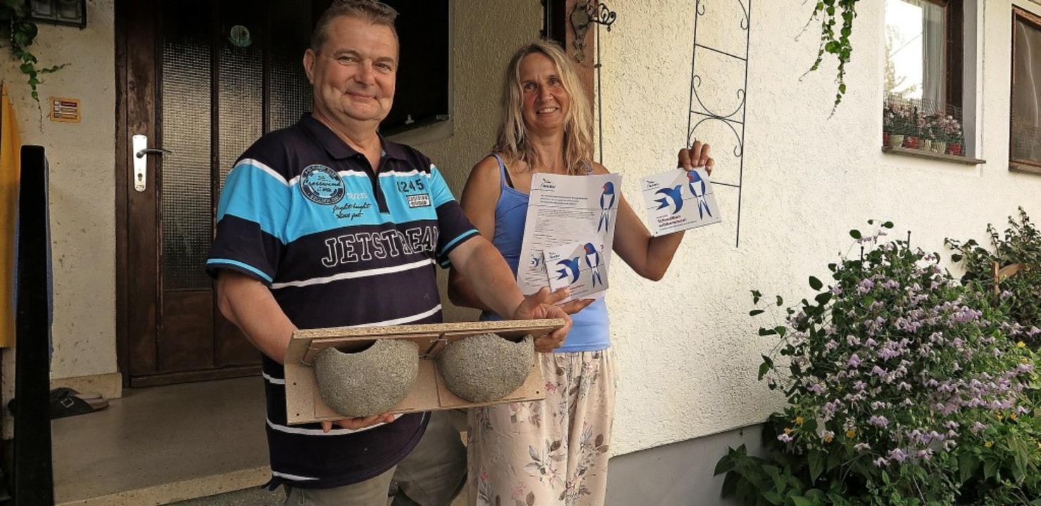 """Teilen ihr als """"Schwalbenfreundl...hilfe für neue Schwalben-Untermieter.     Foto: Dorothee Philipp"""