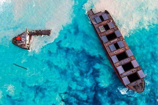 Die Korallenbänke vor der Insel Mauritius werden bleibende Schäden davontragen