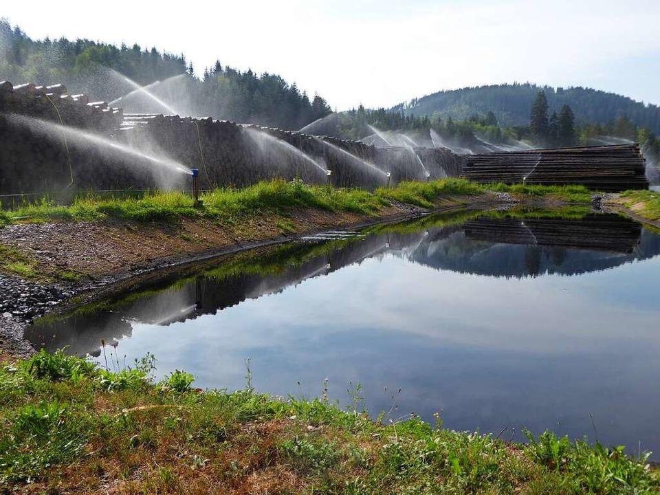 Ein Teil des Nasslagers, vorne der Sic...n versetzte  Beregnungswasser filtert.  | Foto: Peter Stellmach