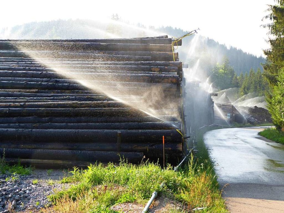 1440 Kubikmeter Wasser werden täglich auf das Holz verteilt.  | Foto: Peter Stellmach