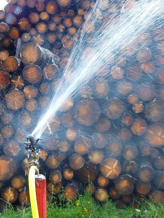 1700 Meter Schlauchleitung und 130 Beregner werden benötigt.  | Foto: Peter Stellmach