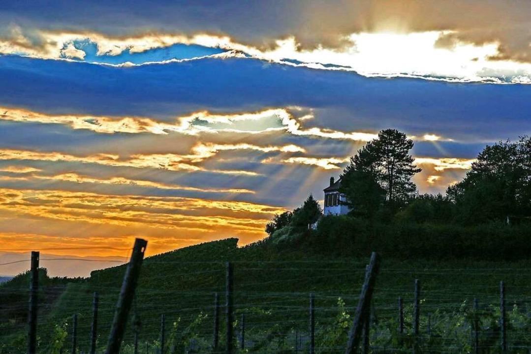 Wolkenspiel in den Reben  | Foto: Sandra Decoux-Kone