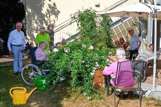 Spende ermöglicht Senioren in Müllheim und Oberweiler das Gärtnern