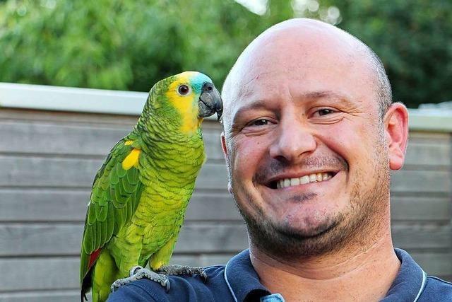 Entflogener Papagei findet neues Zuhause am Kaiserstuhl – und Freunde
