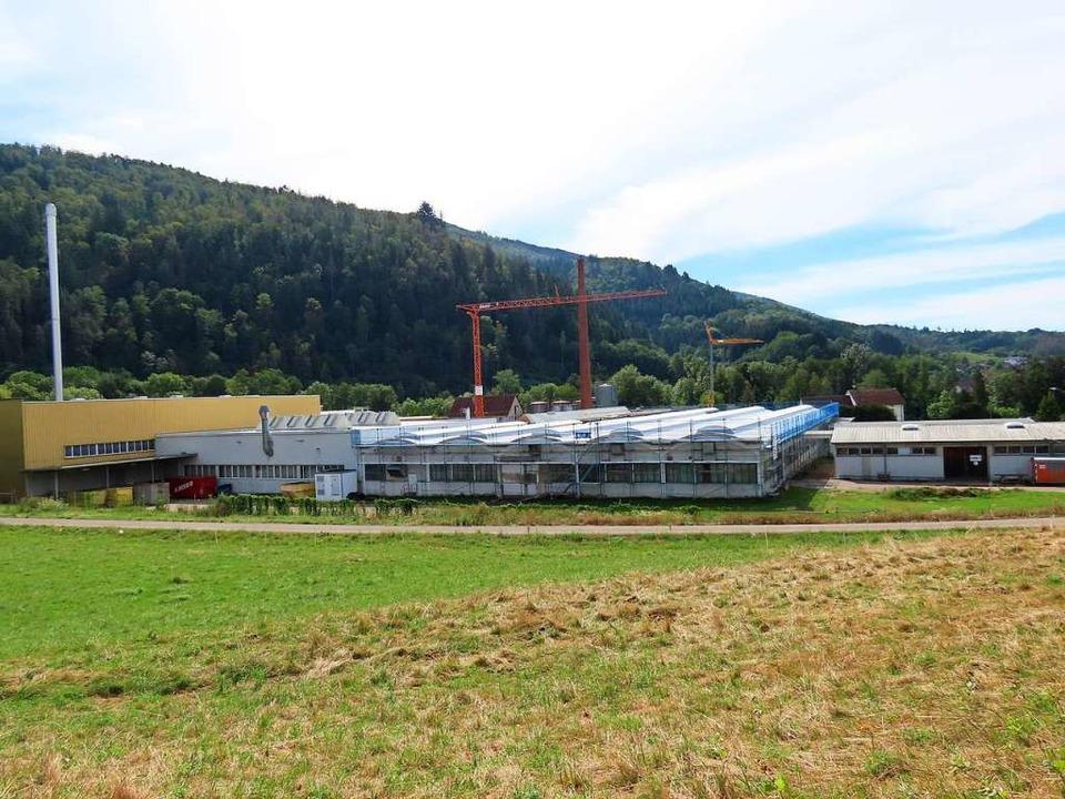 Baukräne stehen derzeit noch im Celanese-Werk in Wehr.    Foto: Gerd Leutenecker