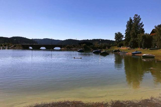 Schluchsee-Wasser ist trüb – Bakterien, aber kein Badeverbot