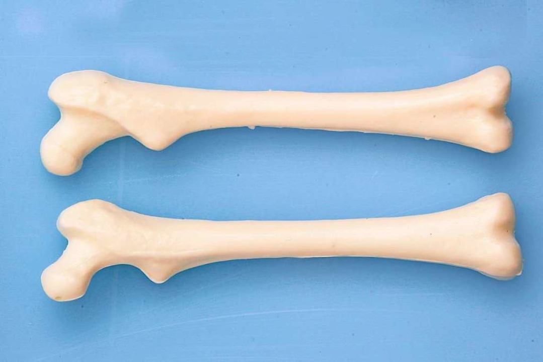 Knochen aus der Düse?  | Foto: euthymia  (stock.adobe.com)