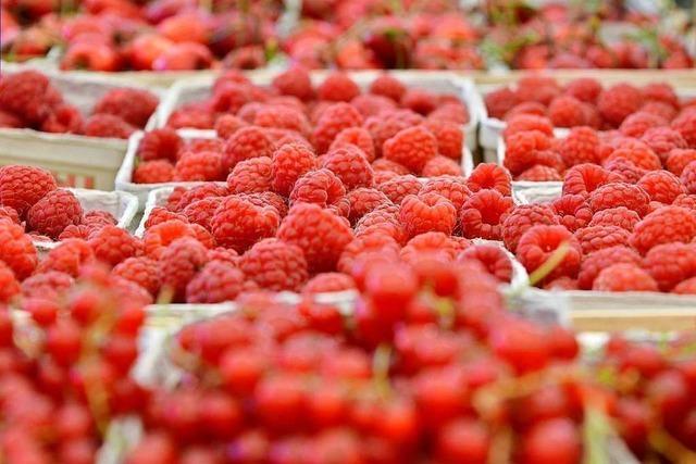 Erzeugergroßmarkt Südbaden brechen wegen Corona die Umsätze weg