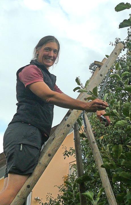 Britta Diekmann bei der Arbeit an einem Apfelbaum in ihrem Garten    Foto: Nina Herrmann