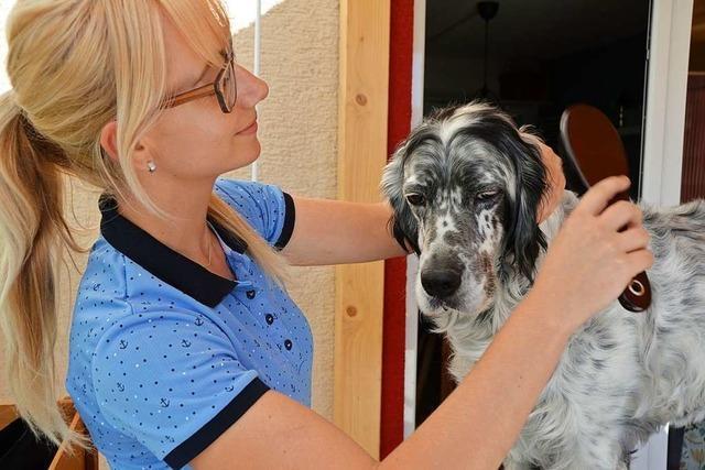Sabine Buderer aus Lahr frisiert Hunde und ihre Besitzer