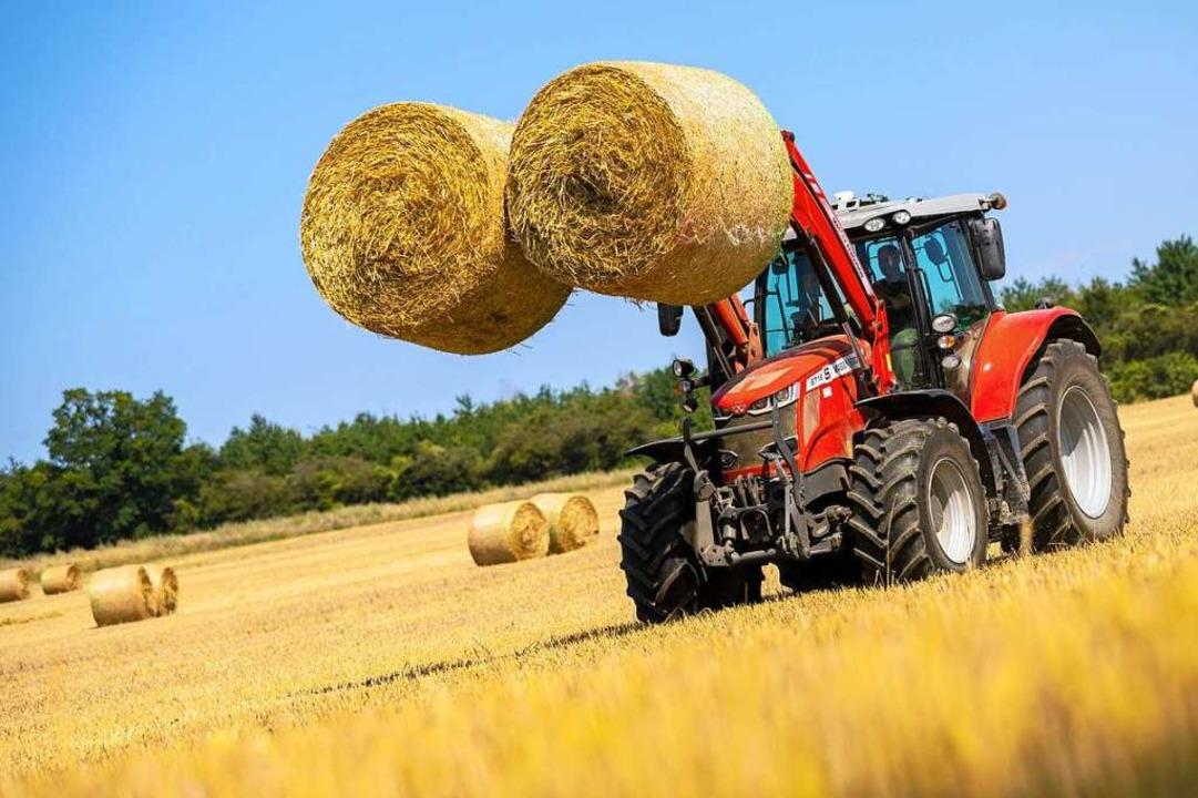 Die Landwirte haben mit hohen Auflagen zu kämpfen (Symbolfoto).  | Foto: Moritz Frankenberg (dpa)