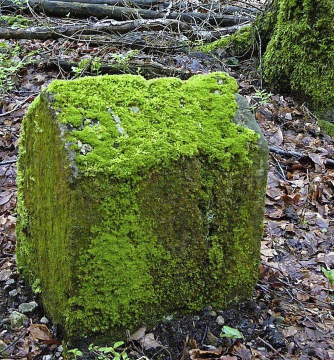 Typischer Grenzstein im Wald: mit Moos bewachsen und oft kaum zu erkennen  | Foto: Richard Kaiser