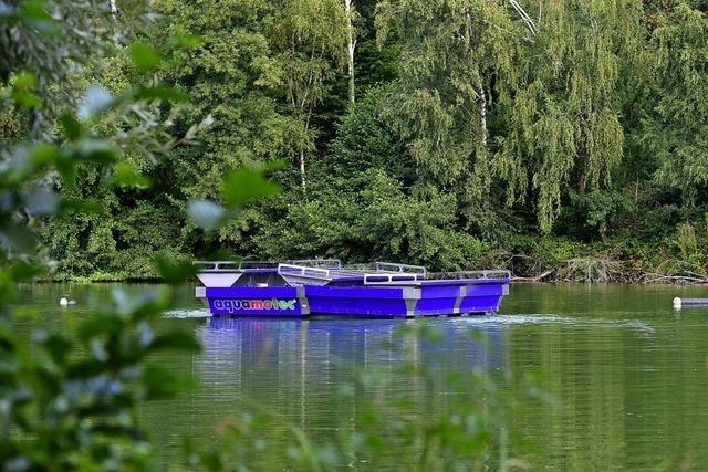 Dass der Waltershofener See nicht umkippt, ist einer Solarpumpe zu verdanken
