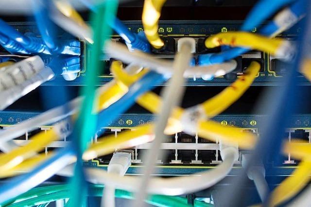 Offenburger Software-Unternehmen Sevdesk schafft bis zu 80 neue Arbeitsplätze