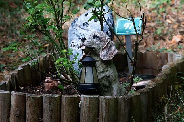 Der Tierfriedhof ist ein Ort der Erinnerung – aber ohne Engelsfiguren
