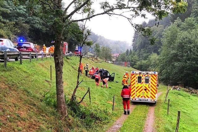 Feuerwehr befreit eingeklemmten Fahrer in Freiamt