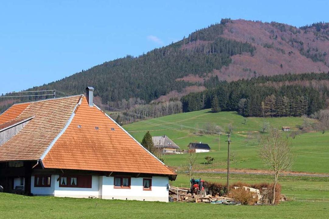Die Landschaftsidylle im Prechtal biet...ingungen für Entspannung und Erholung.  | Foto: Bernd Fackler
