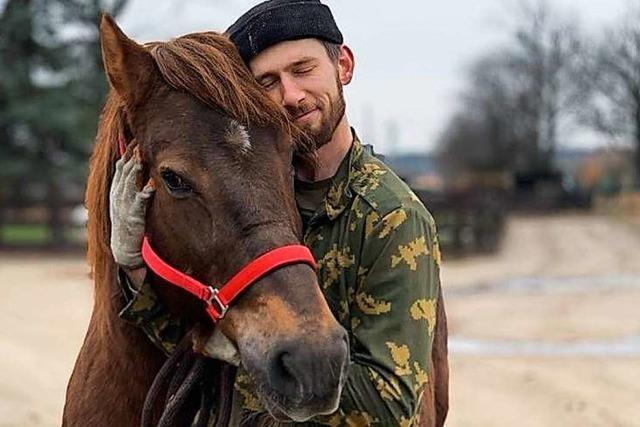 Das letzte Zuhause für alte und kranke Pferde