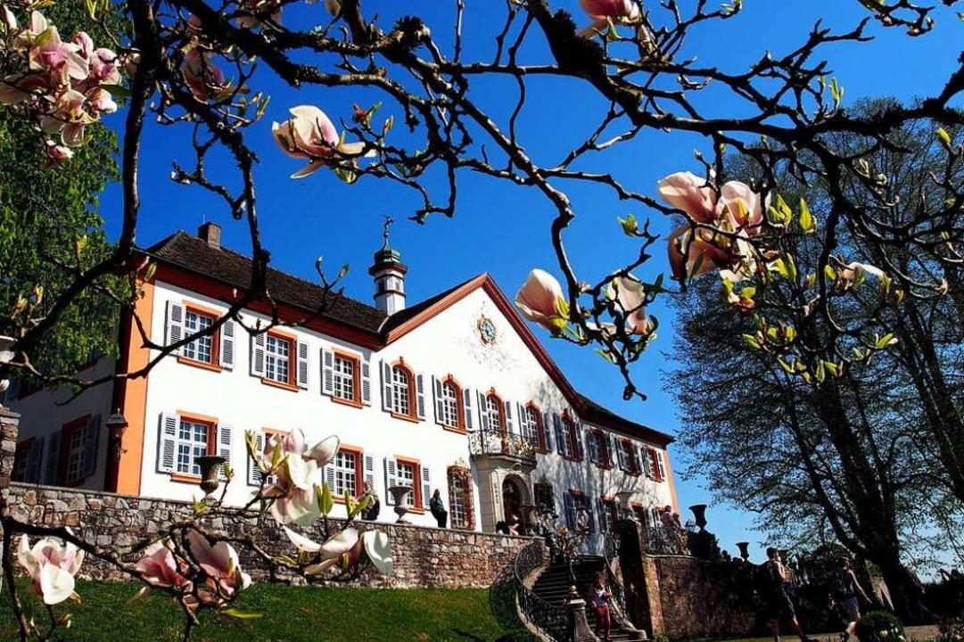 Schloss Bürgeln  | Foto: Markus Donner