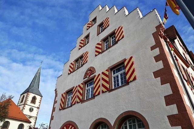 Friesenheims und Hohbergs Rathauschefs über Corona, Kinderbetreuung und mehr