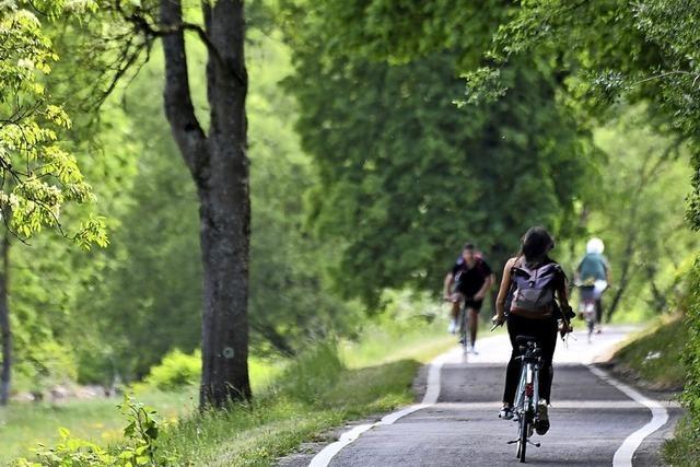 Die Grüne Jugend will mehr Radwege im Landkreis
