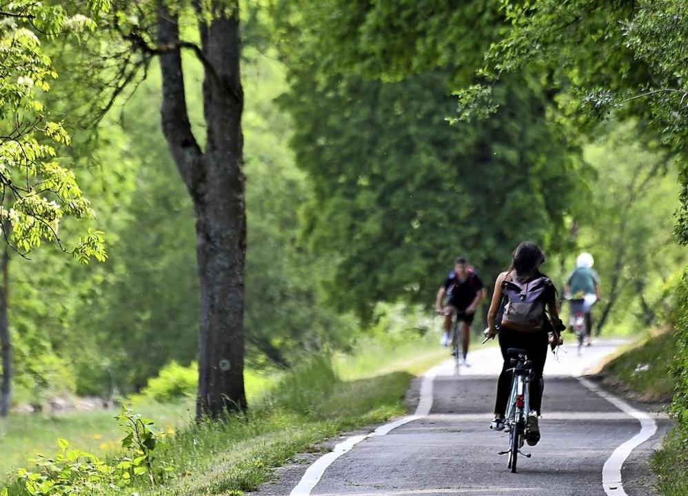 Keine halbherzigen Schutzstreifen, son...e Grüne Jugend im Landkreis Waldshut.   | Foto: Barbara Ruda