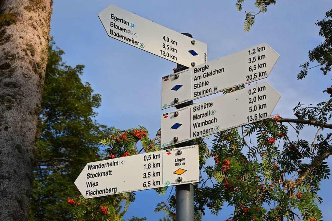 Malsburg-Marzell ist ein Eldorado für Naturverbundene und Wanderer.  | Foto: Markus Maier