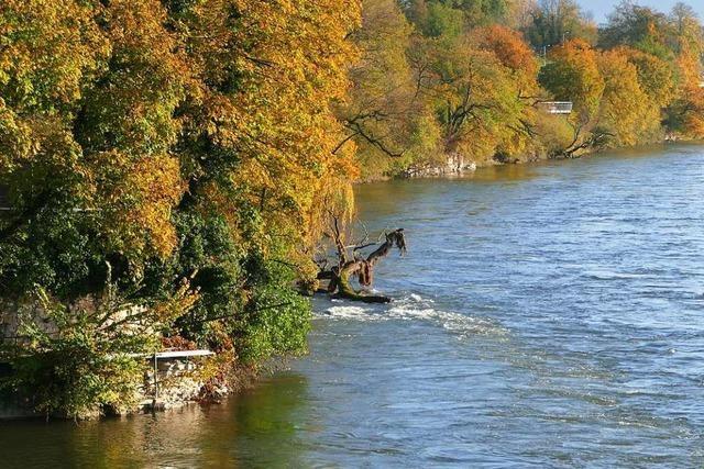 Warmbacher wollen wieder mehr Zustiege in den Rhein