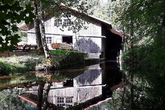 Kleine Wasserkraft stößt oft auf Widerstand von Naturschutzbehörden