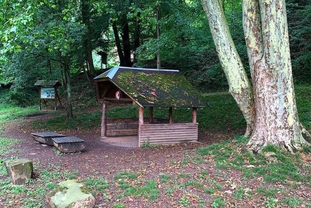 Der Waldlehrpfad am Altvater in Lahr-Kuhbach bietet Natur pur
