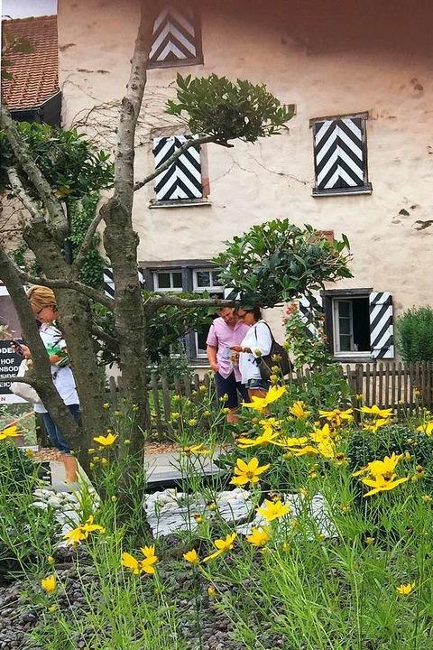 Die Diga auf Schloss Beuggen lädt zum Verweilen.  | Foto: DIGA Gartenmesse Schloss Beuggen