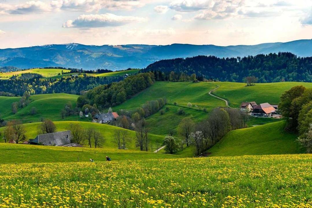 Zur Gemeinde St. Peter gehören zahlreiche Weiler.  | Foto: Klaus Hansen 79761Waldshut GERMN