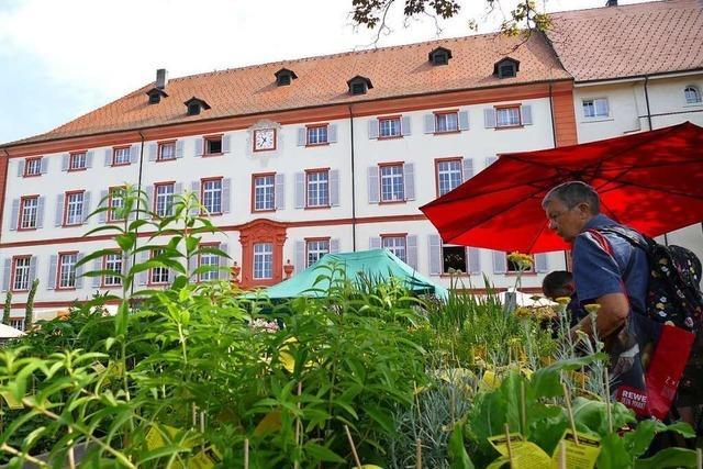 Im September wird auf Schloss Beuggen wieder eine Gartenmesse stattfinden