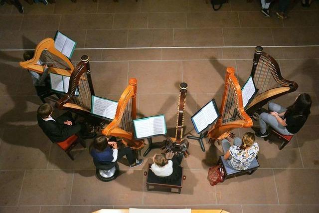 Vom Harfenklang bis zum Gitarrenriff gibt es bei der Weiler Musikschule fast alles