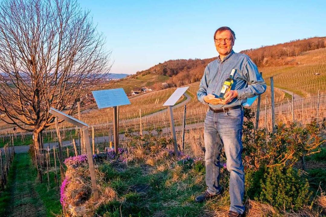 Piwi-Pionier Leonhard Linsenmeier vor seinen Reben am Ebringer Sommerberg  | Foto: Michael Heilemann