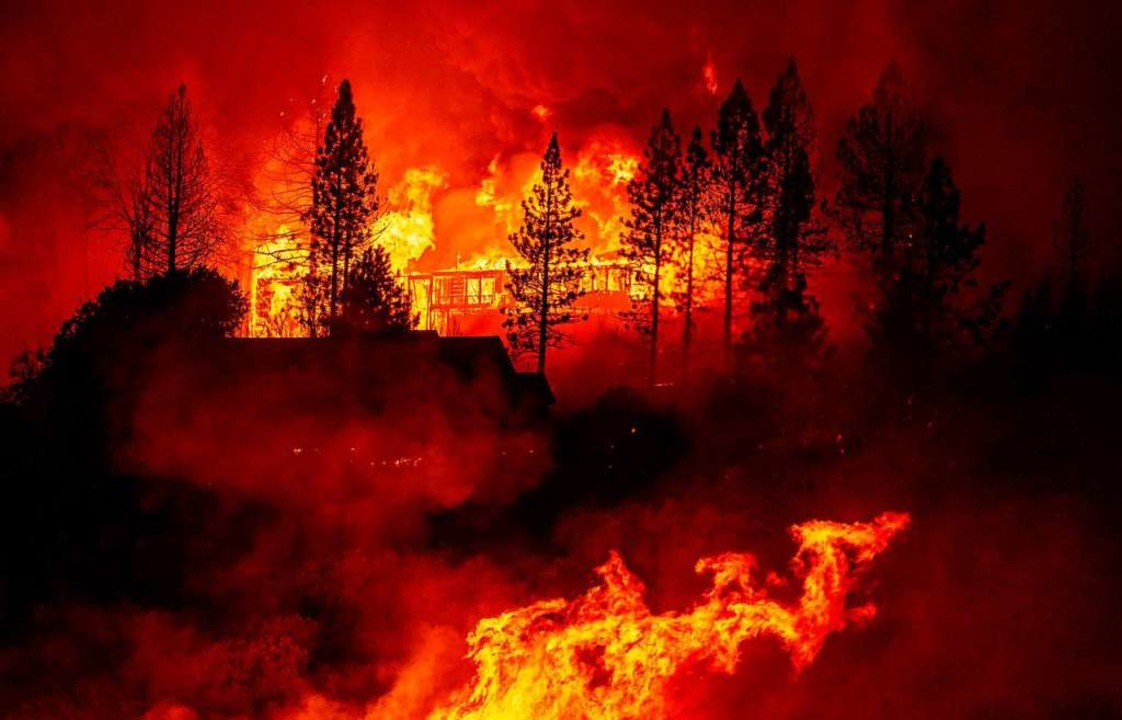"""Das """"Creek Fire"""" zerstörte bisher mehr als 60 Häuser.    Foto: JOSH EDELSON (AFP)"""