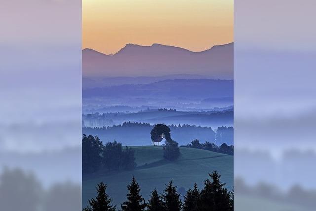 Morgensonne im Allgäu