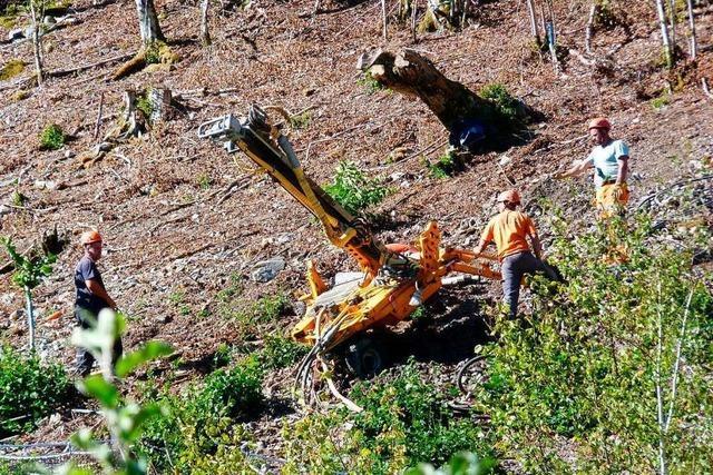 Hochenergiezaun soll Geschwend vor weiteren Felsstürzen schützen