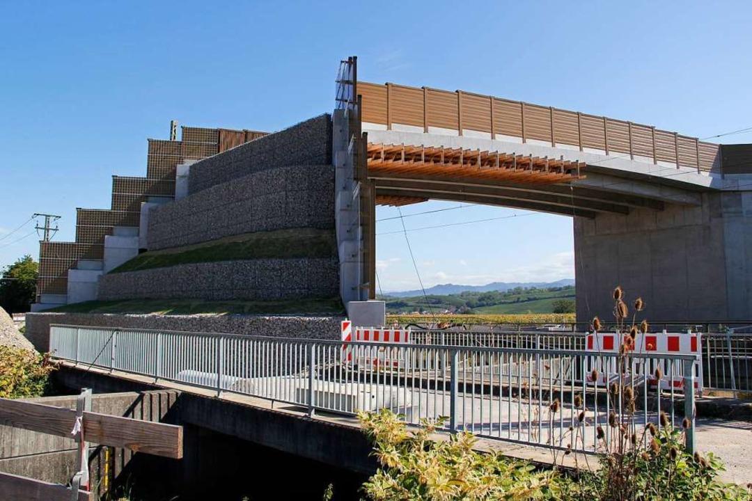 Über die neue Brücke sollen die Fleder... Jagdgründen im Rheintalbahn gelangen.  | Foto: Alexander Huber