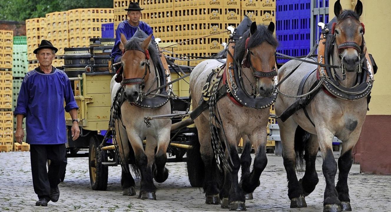 Bei den Pferden herrschte Fluktuation....icht in Freiburg präsentieren konnte.   | Foto: Ingo Schneider