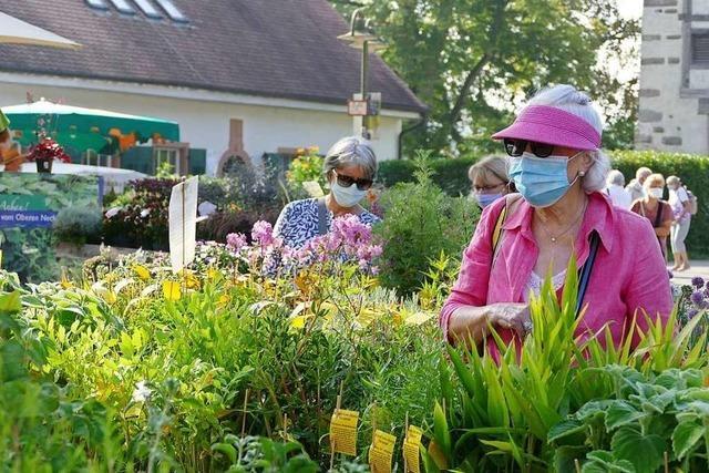 Die Gartenmesse Diga in Rheinfelden