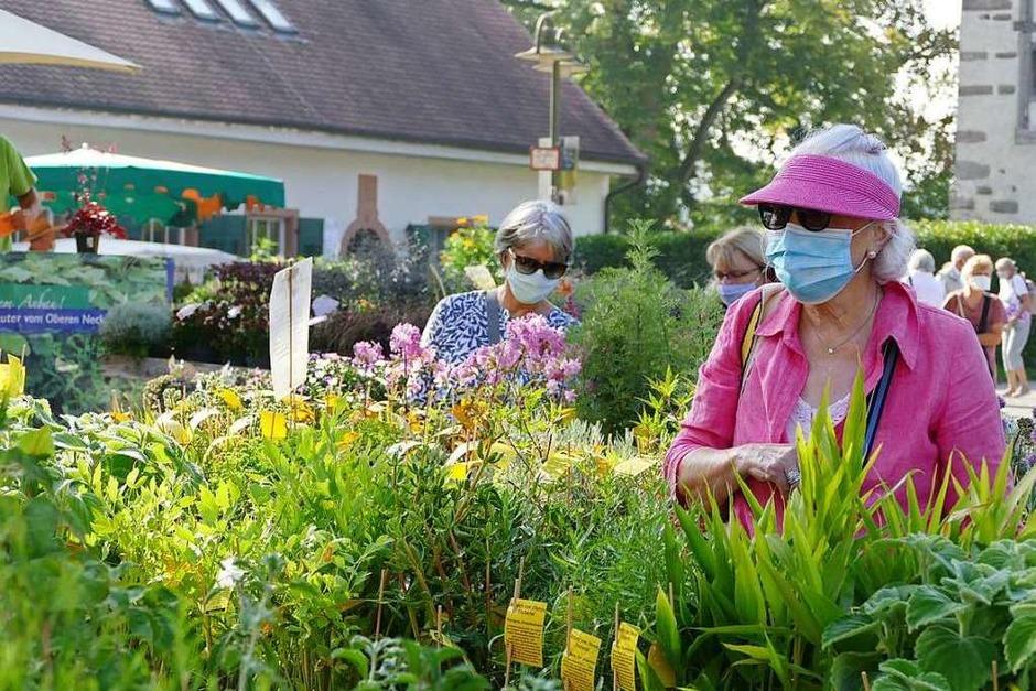 Bei der Gartenmesse Diga gilt auf dem gesamten Gelände Mund- und Nasenschutzpflicht. (Foto: Dora Schöls)