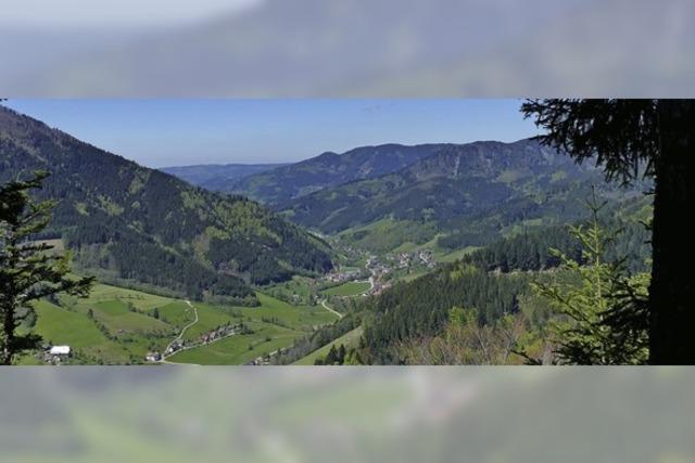 Im Simonswald gibt es einige Routen zu entdecken