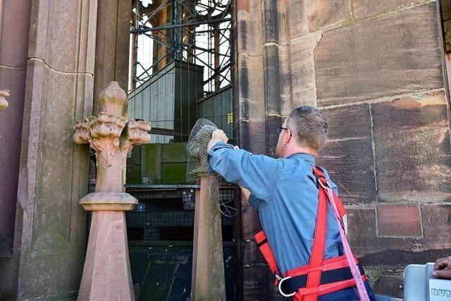 Freiburger Münster wird mit Hubsteiger auf Sicherheit untersucht