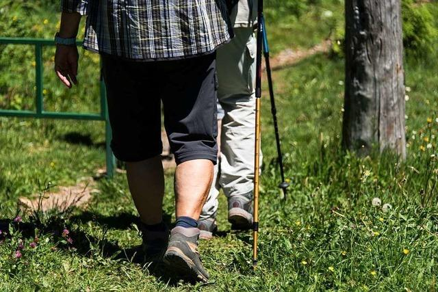 Früher schlurfte man hinter den Eltern her, heute tut man's freiwillig: Wandern