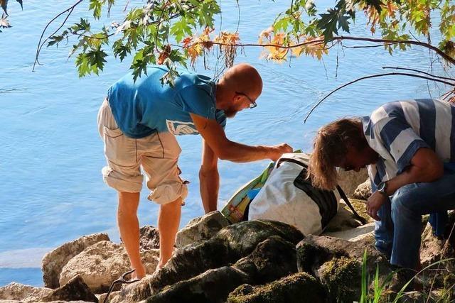 Freiwillige reinigen das Ufer des Rheins bei Bad Säckingen