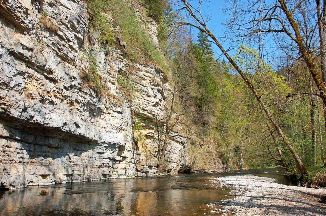 Imposante Felsformationen haben sich in der Muschelkalkschlucht gebildet.   | Foto: Juliane Kühnemund