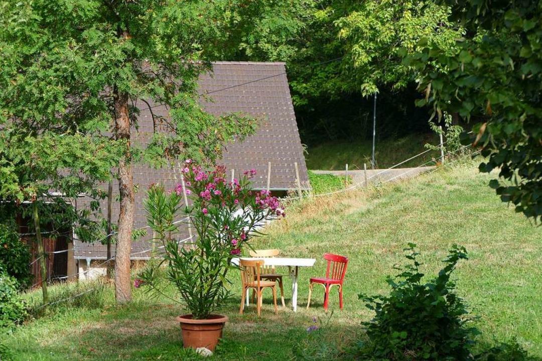 In Rheintal gibt's viel Ruhe und Idyll.    Foto: Susanne Ehmann